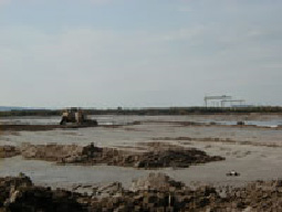 Land Reclamation has become increasing popular in recent years